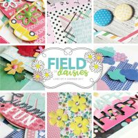 Field of Daisies Card Kit Giveaway