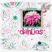 Beautiful Dahlias by Lee-Anne Thornton