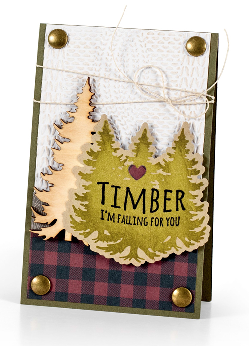Timber by Melissa Phillips