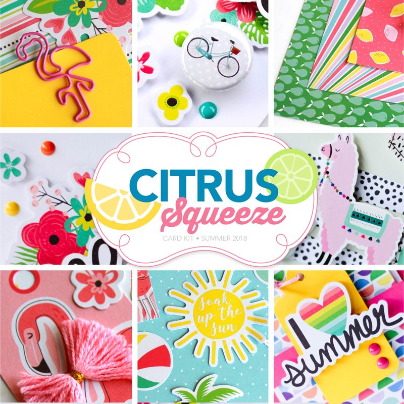citrus squeeze card kit scrapbook cards today magazine