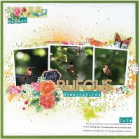 SCT Summer 2018 - Lovely Rufous Hummiingbirds by Tammy Hawes