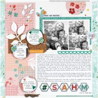 SCT Summer 2018 - SAHM by Sheri Reguly