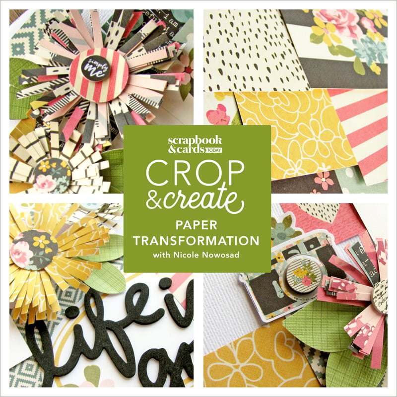 Paper Transformation with Nicole Nowosad