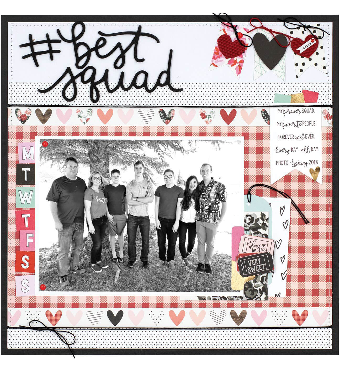 SCT Winter 2018 - #bestsquad by Wendy Sue Anderson