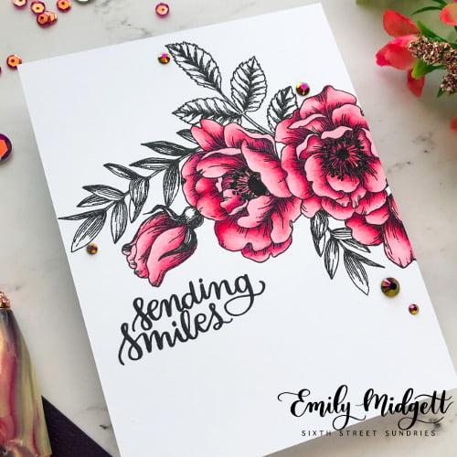 SCT Emily Midgett Copic detail WM 500