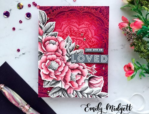 One stamp, two ways with Emily Midgett!