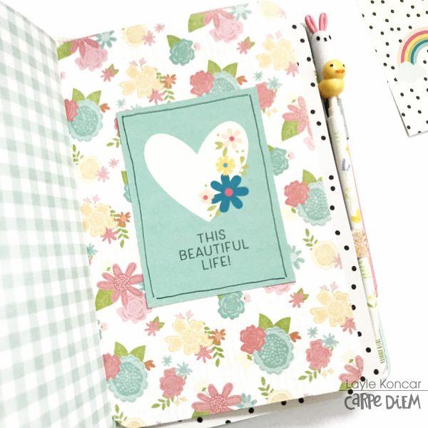pocket folder 1