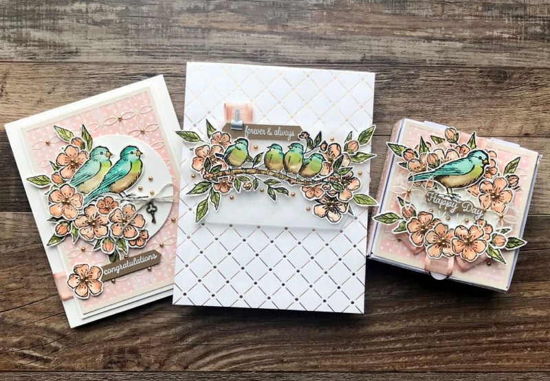 Stampin' Up! for Scrapbook & Cards Today Bird Ballad Photo1