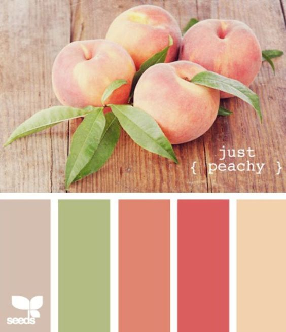 SCT challenge Color inspiration