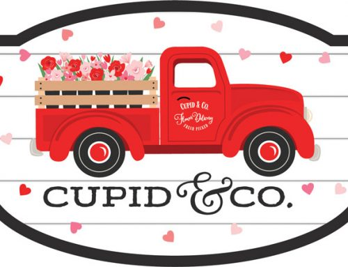 Say Hello to Cupid & Co. from Echo Park Paper!