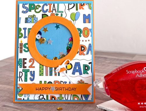 A Shaker Surprise with Scrapbook Adhesives by 3L + GIVEAWAY!