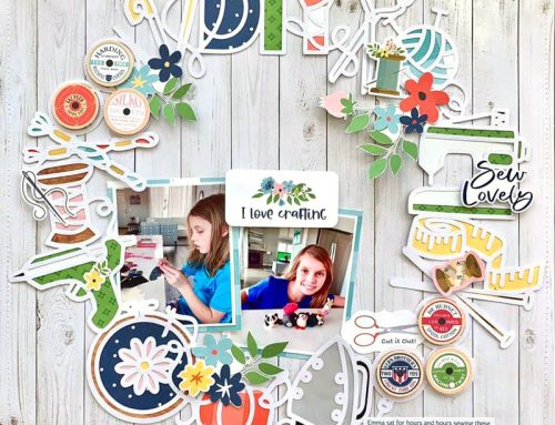 June SCT Sampler Subscriber Projects!
